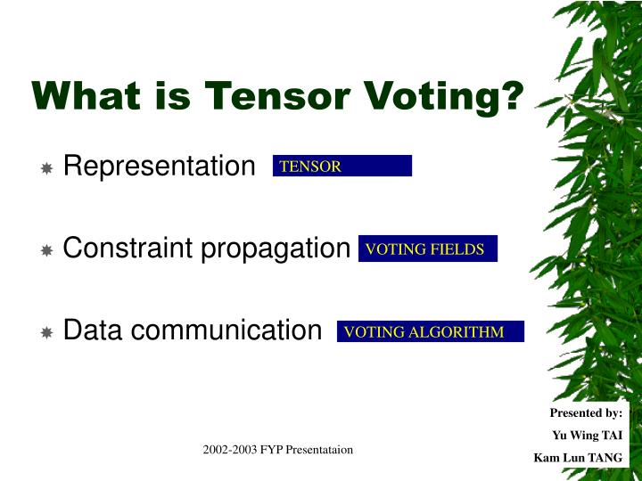 What is Tensor Voting?