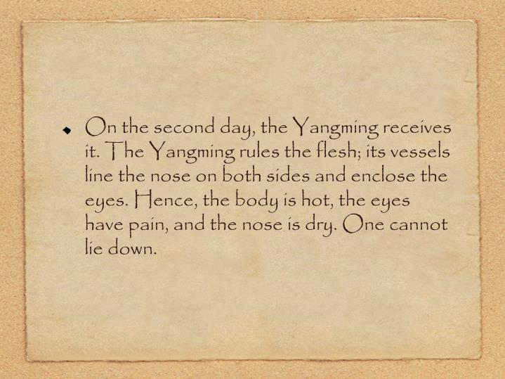 On the second day, the Yangming receives it. The Yangming rules the flesh; its vessels line the nose on both sides and enclose the eyes. Hence, the body is hot, the eyes have pain, and the nose is dry. One cannot lie down.