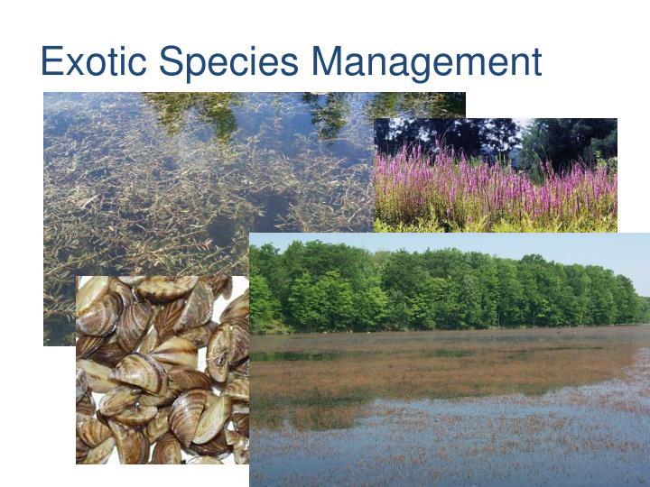 Exotic Species Management