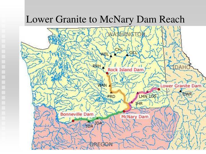 Lower granite to mcnary dam reach