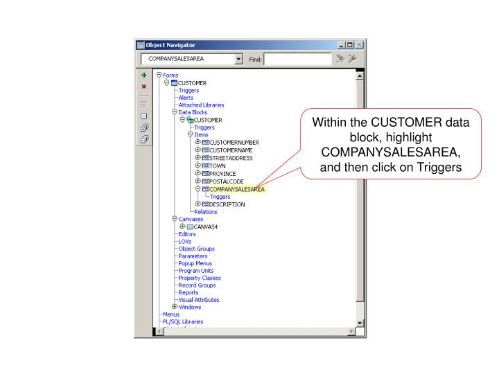 Within the CUSTOMER data block, highlight COMPANYSALESAREA, and then click on Triggers
