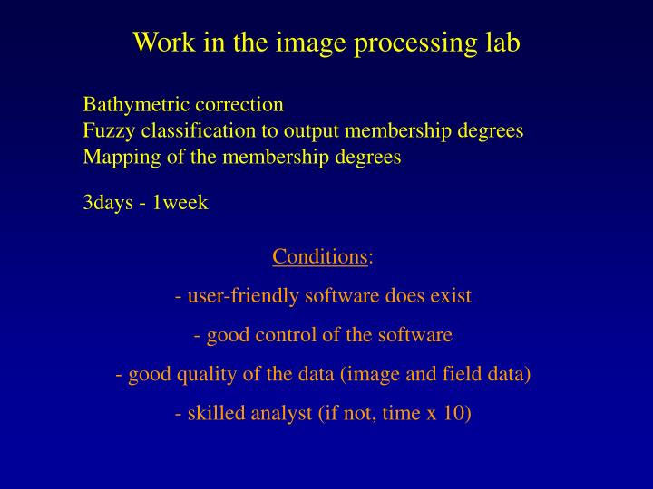 Work in the image processing lab
