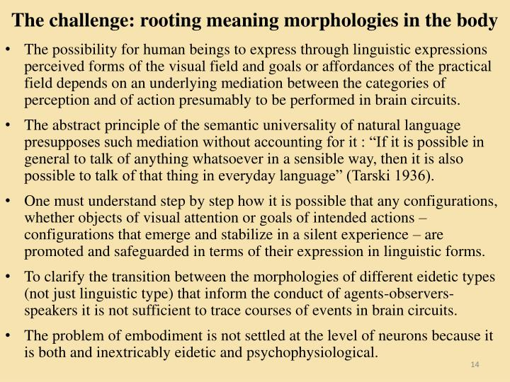 The challenge: rooting meaning morphologies in the body