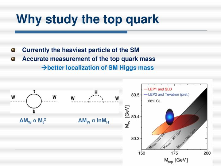 Why study the top quark