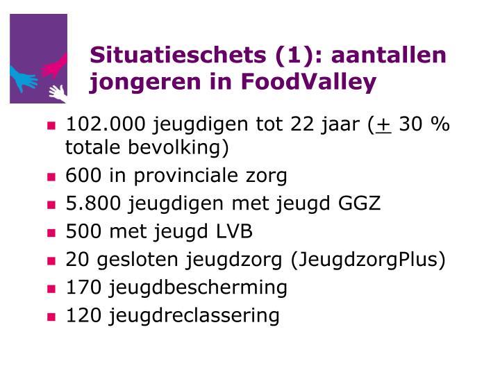 Situatieschets (1): aantallen jongeren in FoodValley