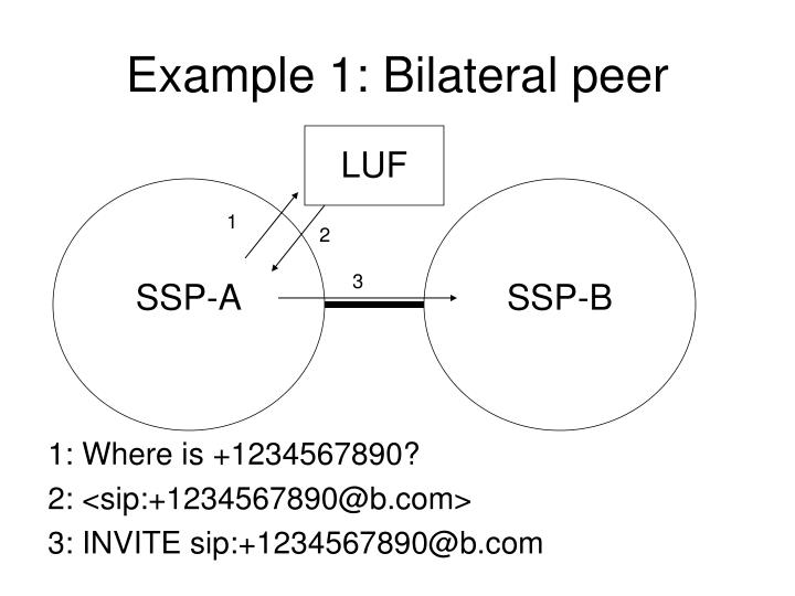 Example 1: Bilateral peer