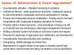 causes of deforestation forest degradation