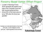 forestry based carbon offset project