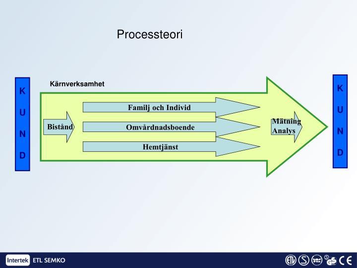 Processteori