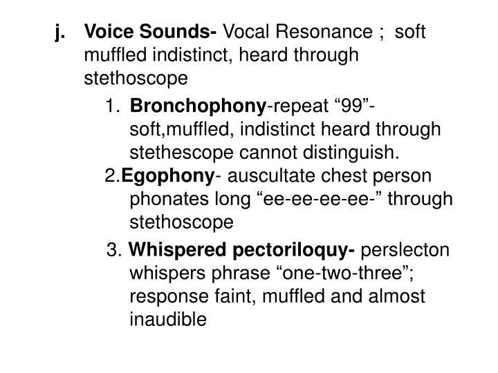 Voice Sounds-