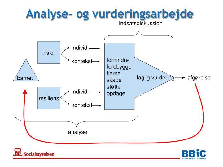 Analyse- og vurderingsarbejde