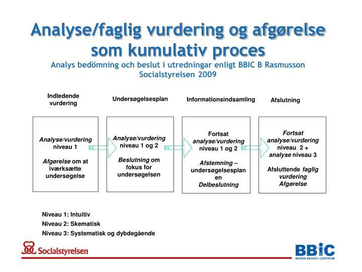 Analyse/faglig vurdering og afgørelse