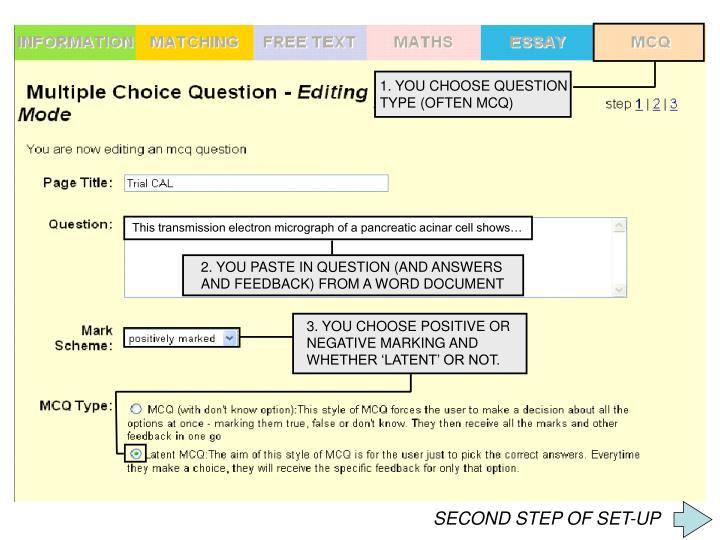 1. YOU CHOOSE QUESTION
