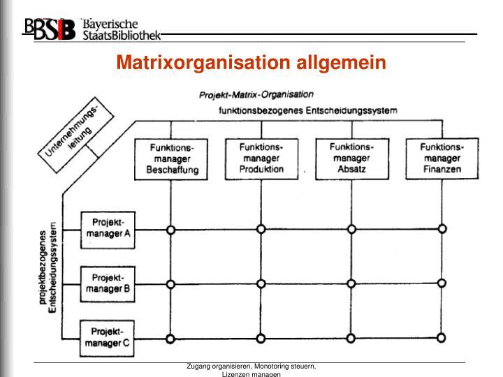Matrixorganisation allgemein