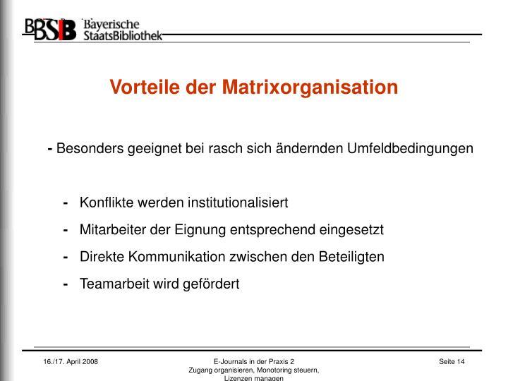 Vorteile der Matrixorganisation