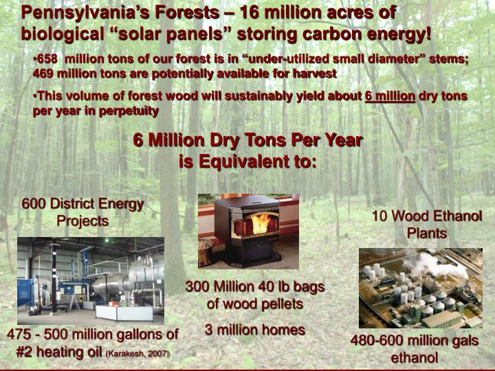 """Pennsylvania's Forests – 16 million acres of biological """"solar panels"""" storing carbon energy!"""
