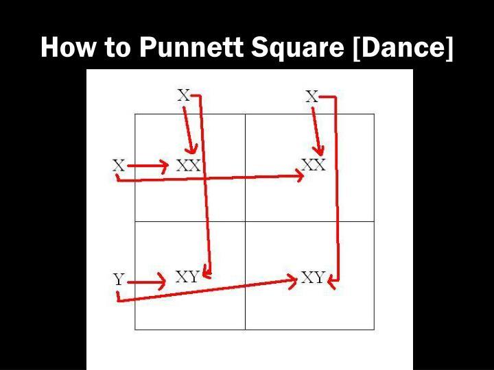 How to Punnett Square [Dance]