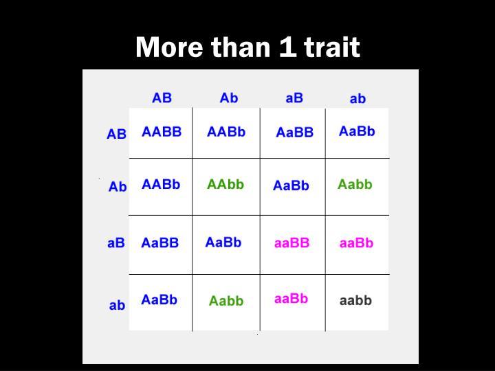 More than 1 trait