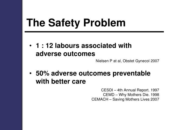 The Safety Problem