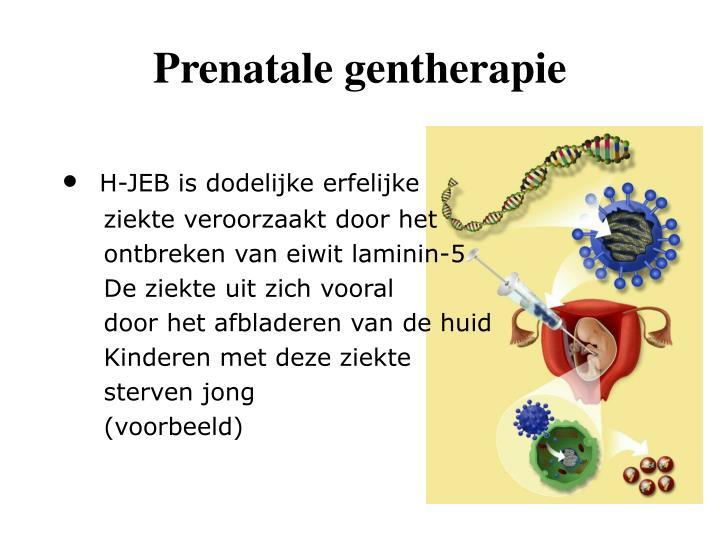 Prenatale gentherapie