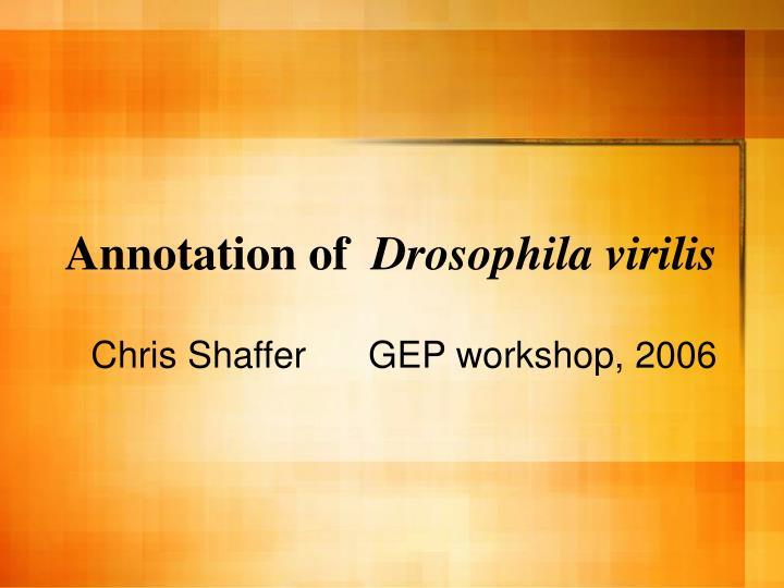 Annotation of drosophila virilis