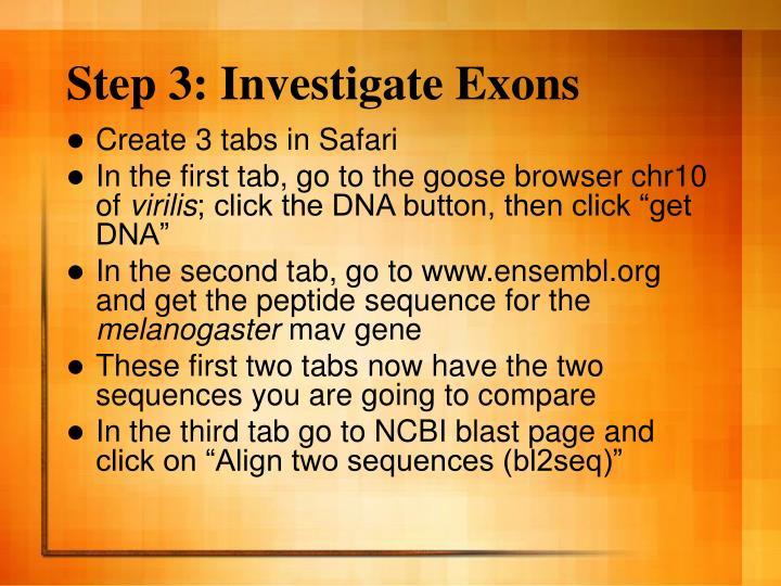 Step 3: Investigate Exons