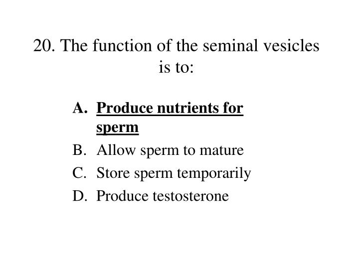 20. The function of the seminal vesicles is to: