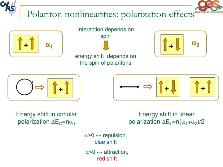 Polariton nonlinearities polarization effects