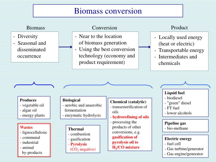 Biomass conversion