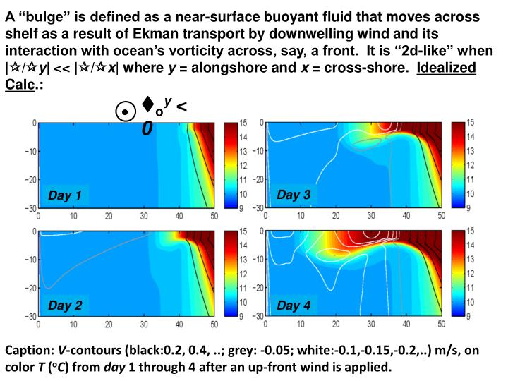 "A ""bulge"" is defined as a near-surface buoyant fluid that moves across shelf as a result of Ekman transport by downwelling wind and its interaction with ocean's vorticity across, say, a front.  It is ""2d-like"" when 
