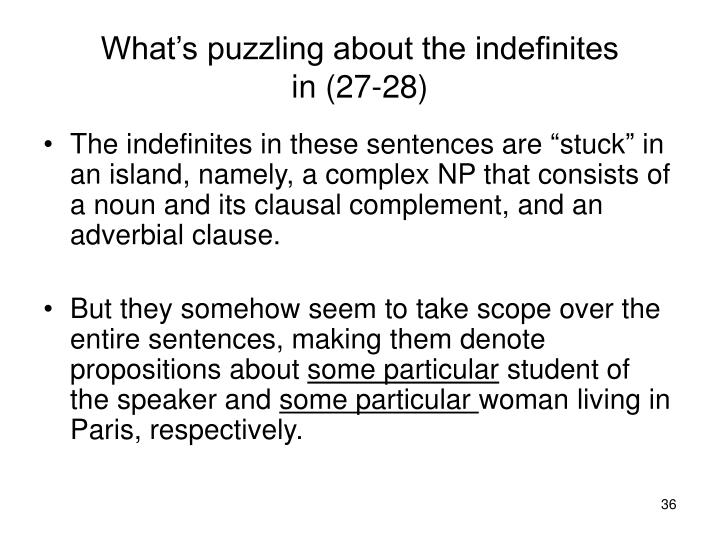 What's puzzling about the indefinites