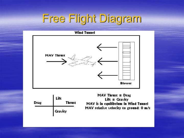Free Flight Diagram
