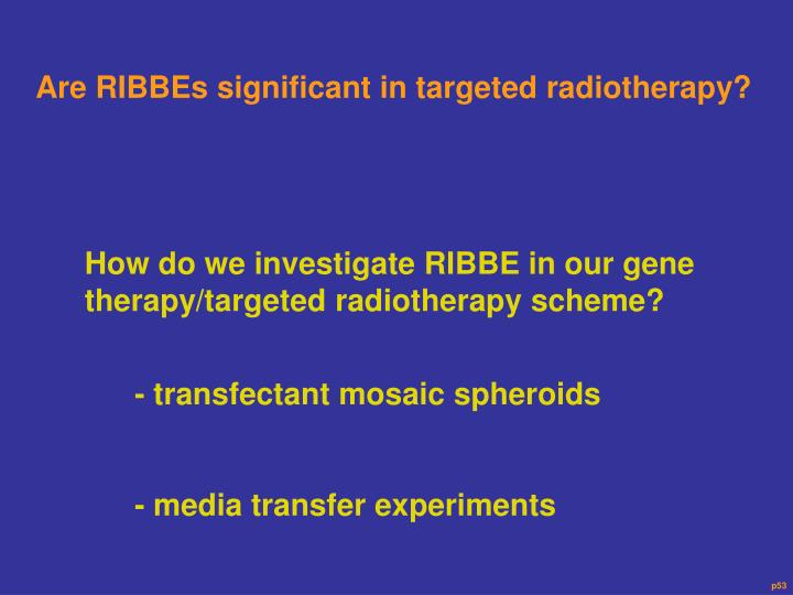Are RIBBEs significant in targeted radiotherapy?
