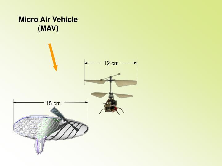 Micro Air Vehicle  (MAV)