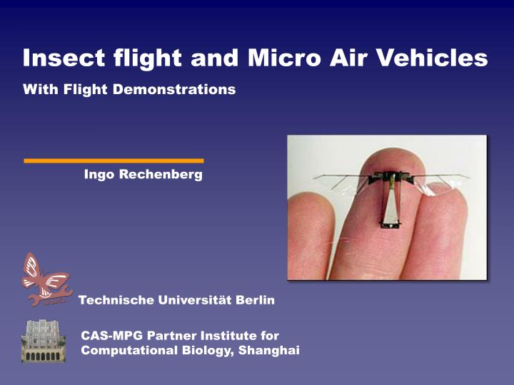 Insect flight and Micro Air Vehicles