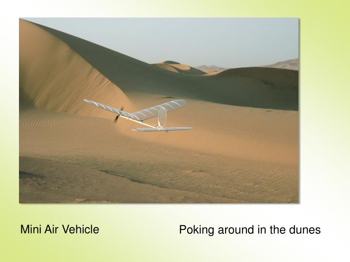 Mini Air Vehicle