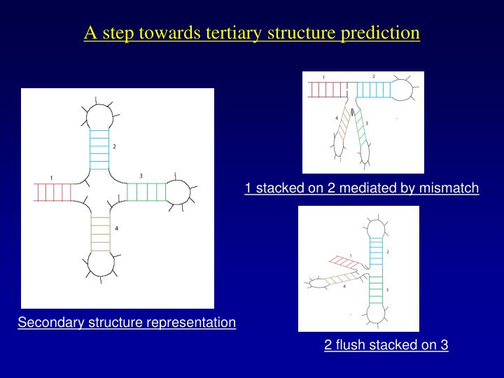 A step towards tertiary structure prediction