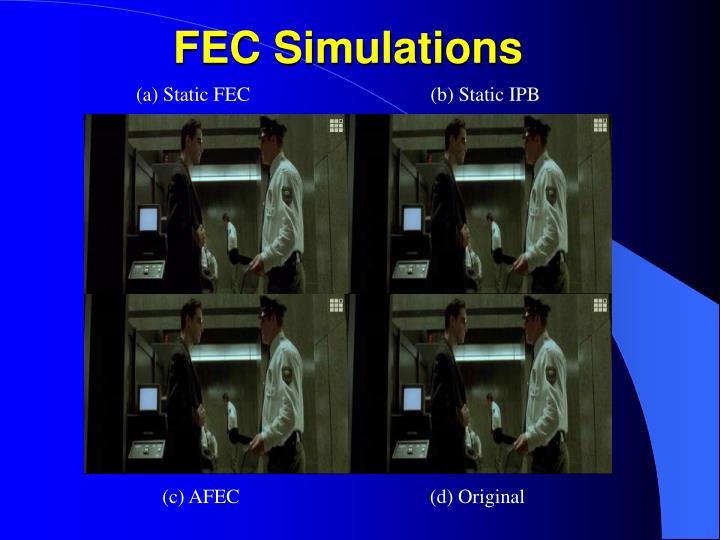 FEC Simulations