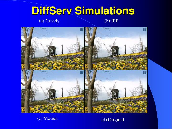 DiffServ Simulations