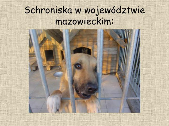 Schroniska w województwie mazowieckim: