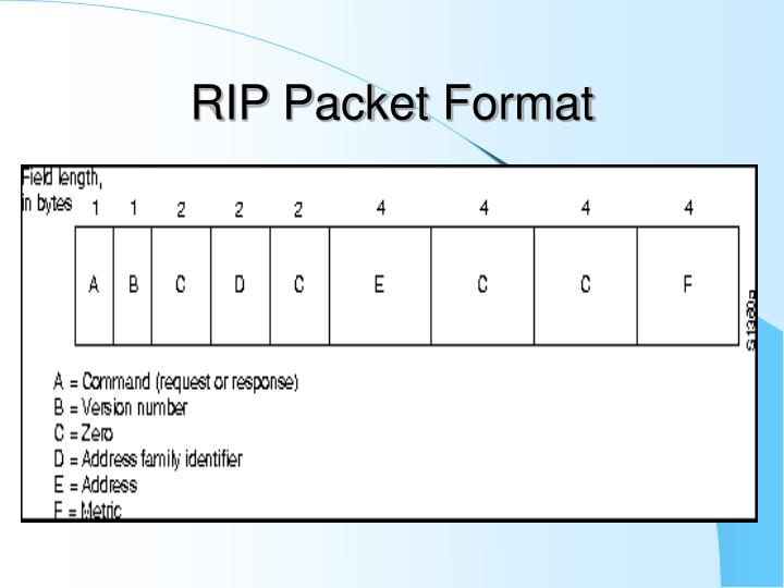 RIP Packet Format