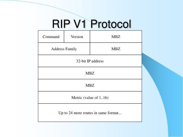RIP V1 Protocol