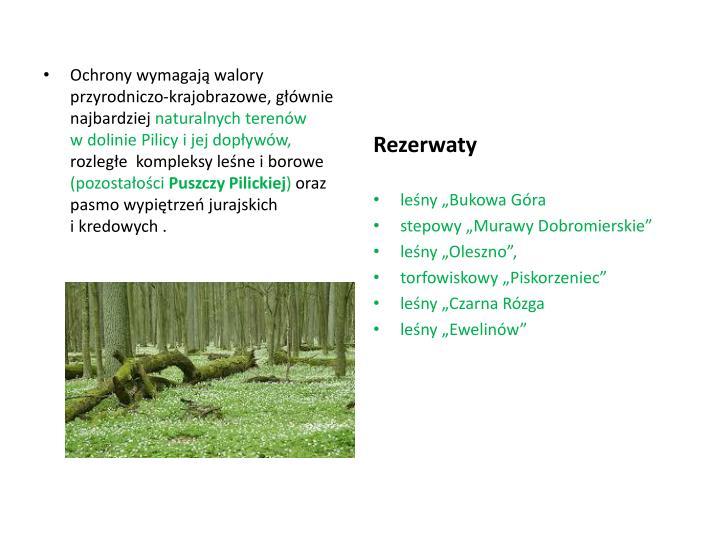 Ochrony wymagają walory przyrodniczo-krajobrazowe, głównie najbardziej