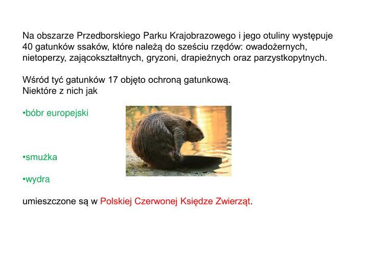 Na obszarze Przedborskiego Parku Krajobrazowego ijego otuliny występuje 40 gatunków ssaków, które należą dosześciu rzędów: owadożernych, nietoperzy, zającokształtnych, gryzoni, drapieżnych oraz parzystkopytnych.