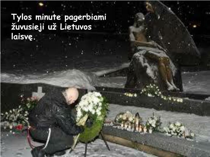 Tylos minute pagerbiami žuvusieji už Lietuvos laisvę.