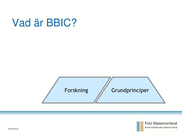 Vad är BBIC?