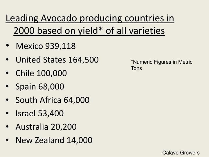 Leading Avocado producing countries in 2000 based on yield* of all varieties