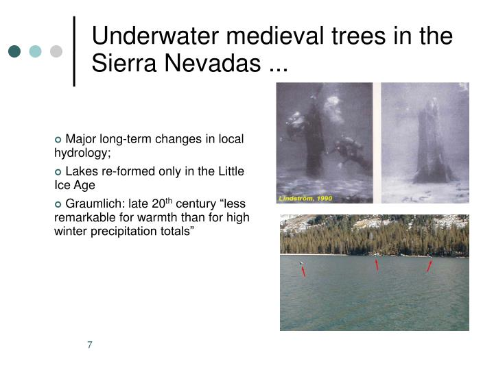 Underwater medieval trees in the Sierra Nevadas ...