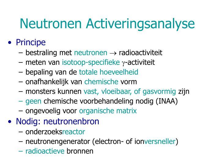 Neutronen Activeringsanalyse