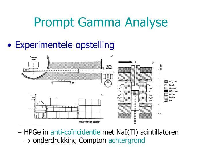 Prompt Gamma Analyse